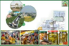 West Bengal State Food Processing and Horticulture Development Corporation Limited